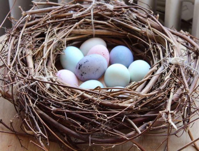 А не будет ли от употребления утиных яиц вреда, задаются многие? все о свойствах, пользе и вреде утиных яиц, особенностях их приготовления