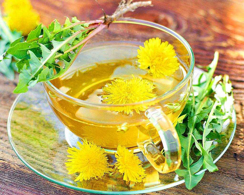 Чай из календулы – польза, подаренная природой