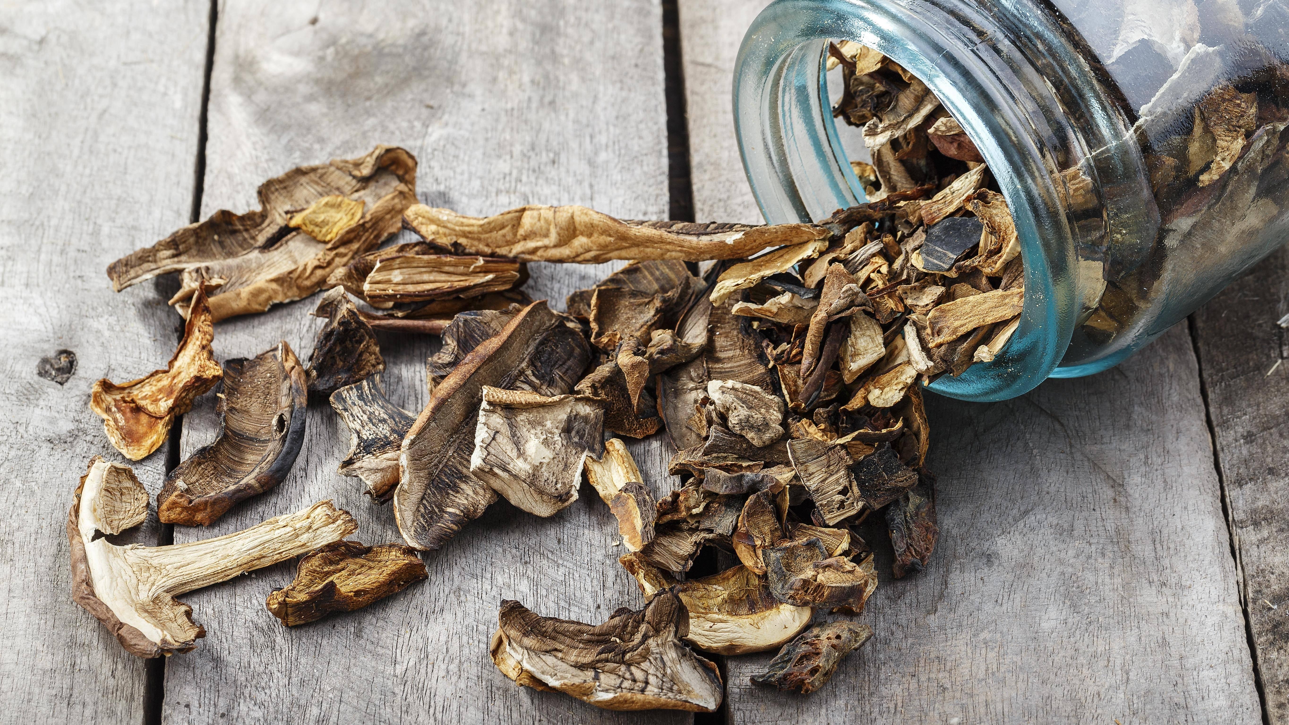Как правильно сушить грибы: на нитке, в духовке и в микроволновке