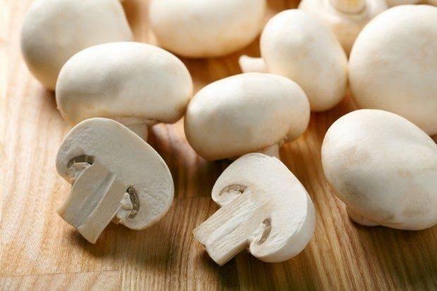 Грибы шампиньоны: польза и вред для организма. как их приготовить?