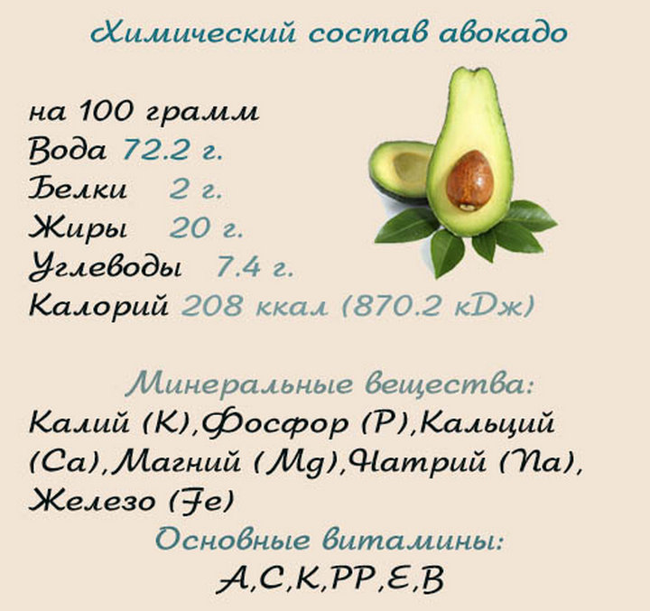 Авокадо — польза и чем вреден для организма
