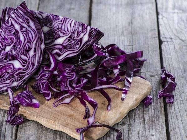 Капуста краснокочанная: какова ее польза и возможен ли вред? рецепты блюд с этим овощем