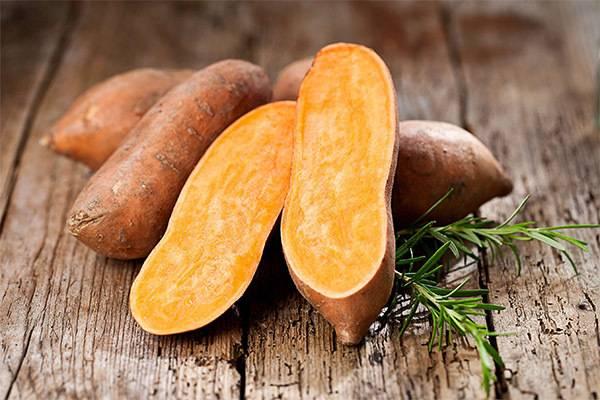 Сладкий картофель батат: полезные свойства и противопоказания