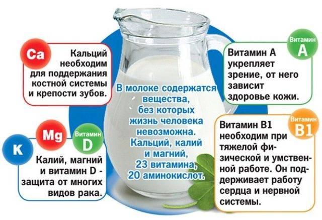 Миндальное молоко польза и вред для здоровья организма человека