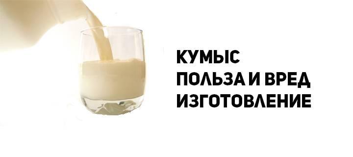 Национальный напиток кумыс