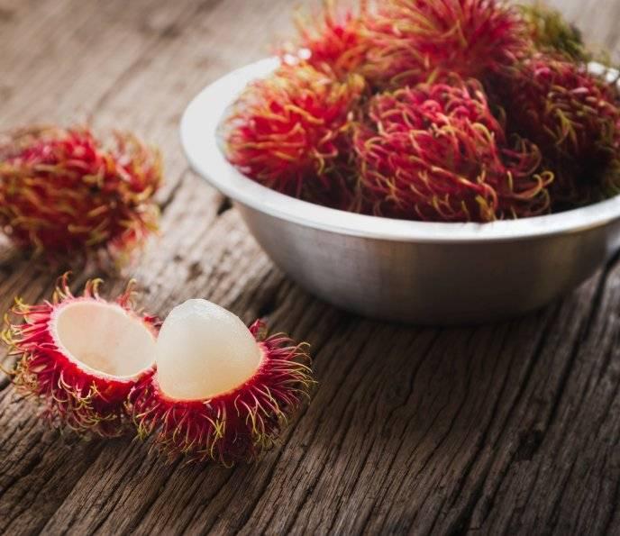 Рамбутан фрукт — как его едят? рамбутан и личи разница