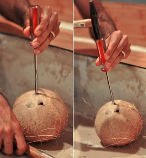 10 способов, как открыть кокос в домашних условиях при помощи молотка и без него
