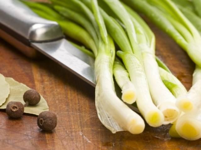 Как сушить зеленый лук