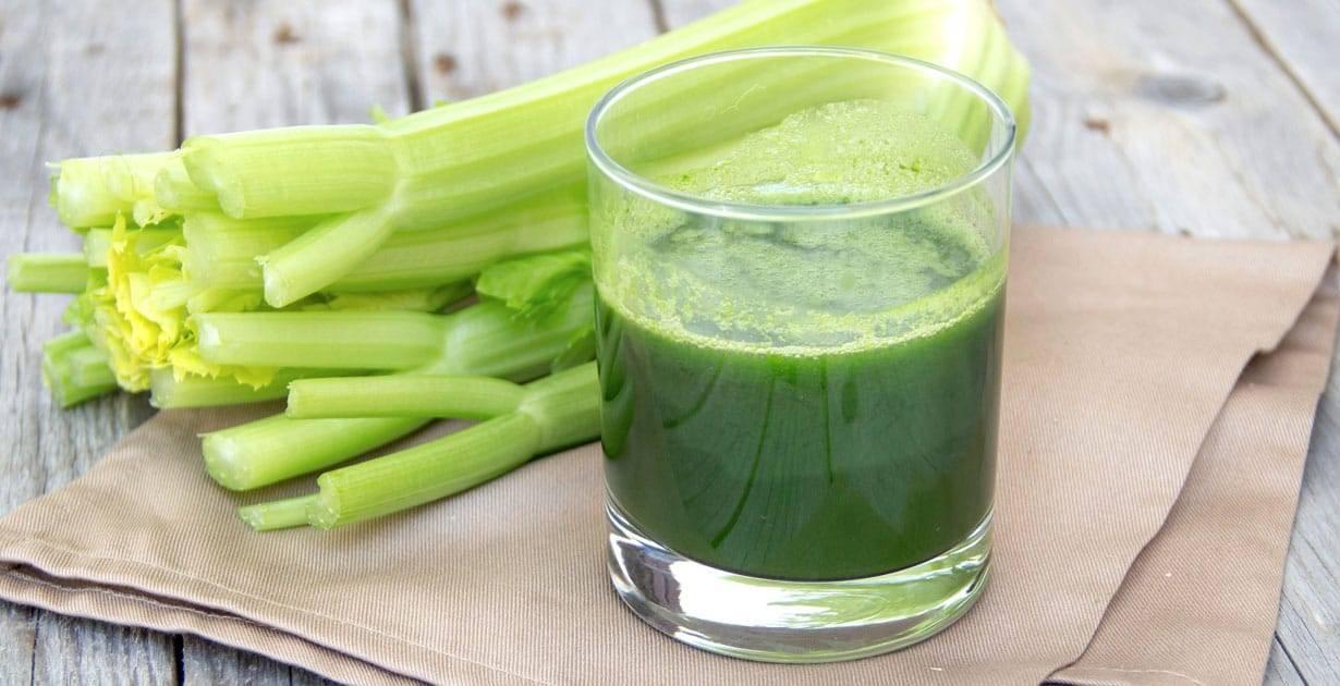 Сок из сельдерея — польза и вред для организма