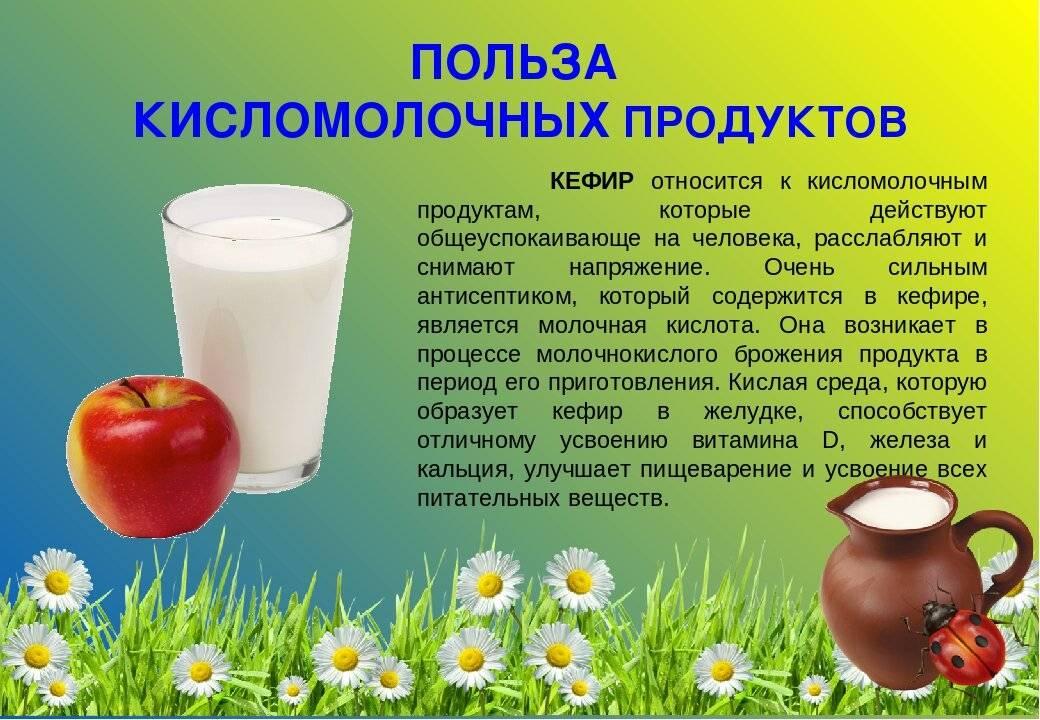 Можно ли пить сырое молоко и чем это опасно