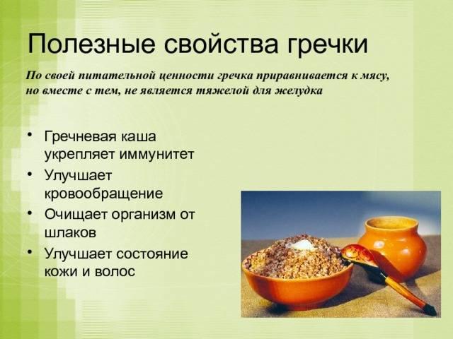 Польза и вред гречки для здоровья человека