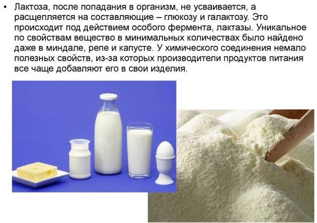 Сыворотка молочная — полезные свойства и как употреблять