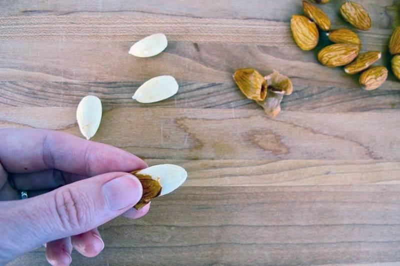 Как почистить миндаль от скорлупы. миндаль — полезные свойства и противопоказания, применение, горький и сладкий орех. избавляемся от кожуры с помощью воды