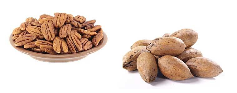 Полезные свойства ореха пекан для женщин