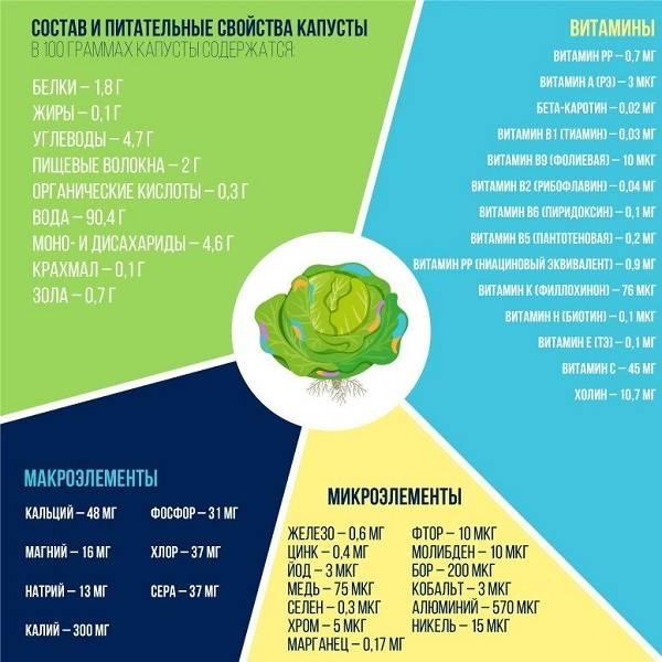 Чем полезен и вреден сок капусты: химический состав, лечебные свойства и противопоказания, правильное употребление