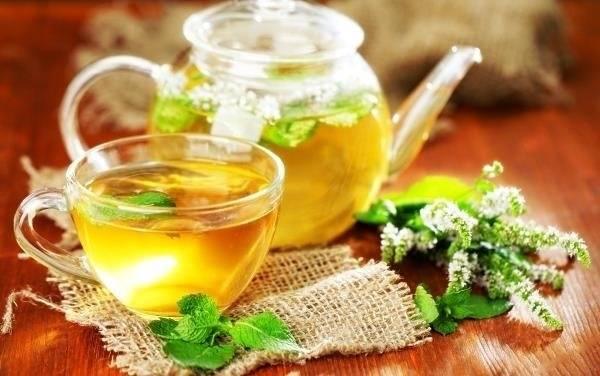 Чай с мятой: польза и вред, свойства и противопоказания, рецепты приготовления и другие нюансы