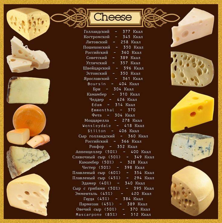 Сыр: полезные свойства и противопоказания, рецепты, сорта