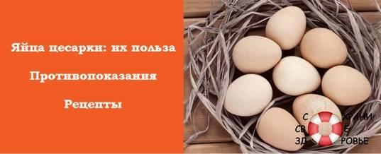 Яйца цесарки — польза и вред для здоровья