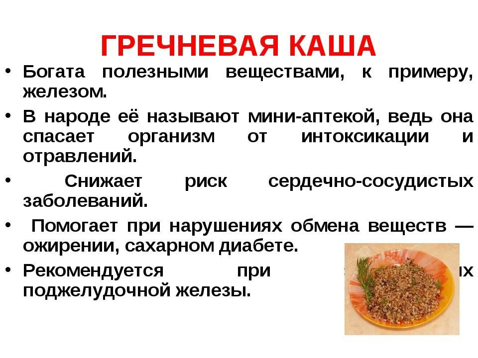 Польза гречки и гречневой каши, а так же её вред для организма