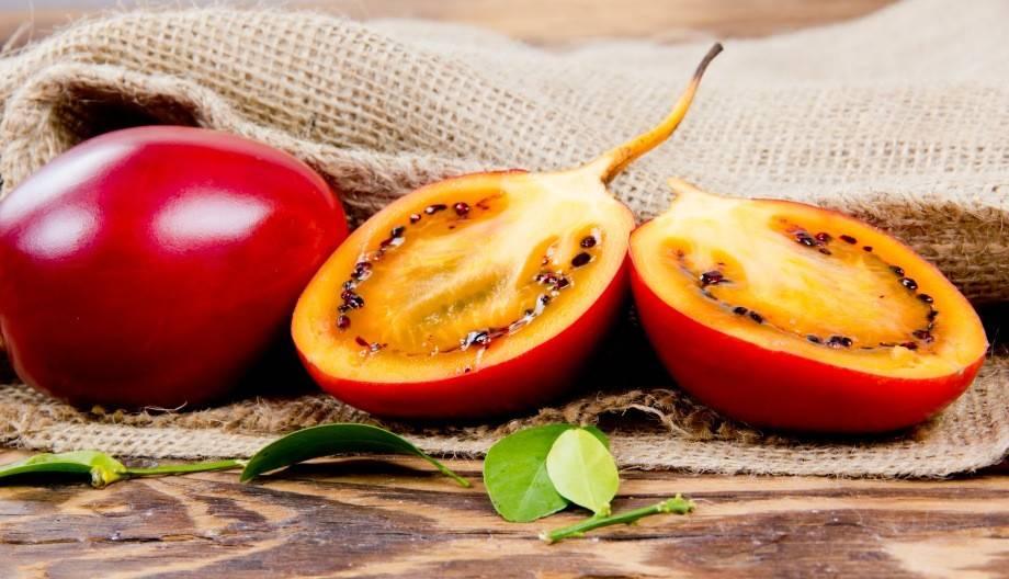 Тамарилло – что это такое, как едят, полезные свойства
