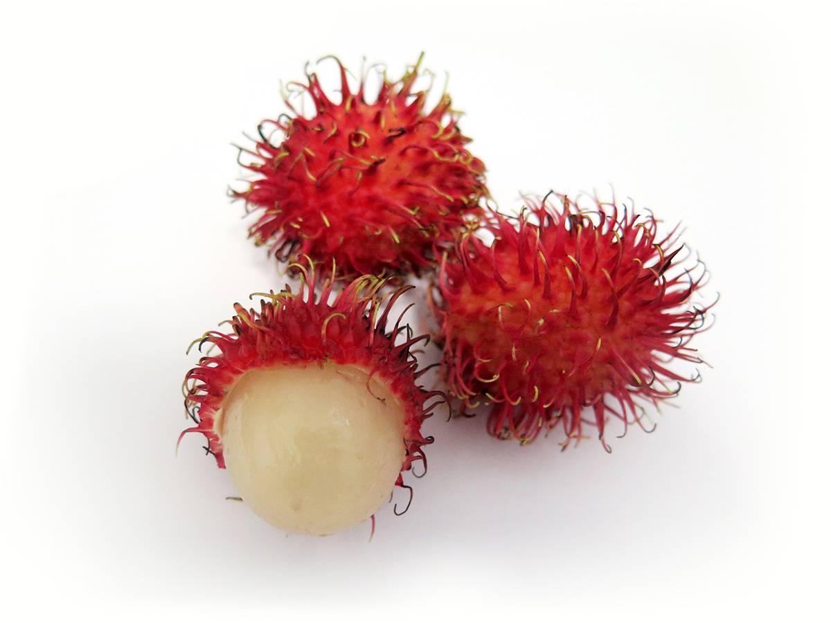 Рамбутан: фото и описание фрукта, как и где растет, польза и вред