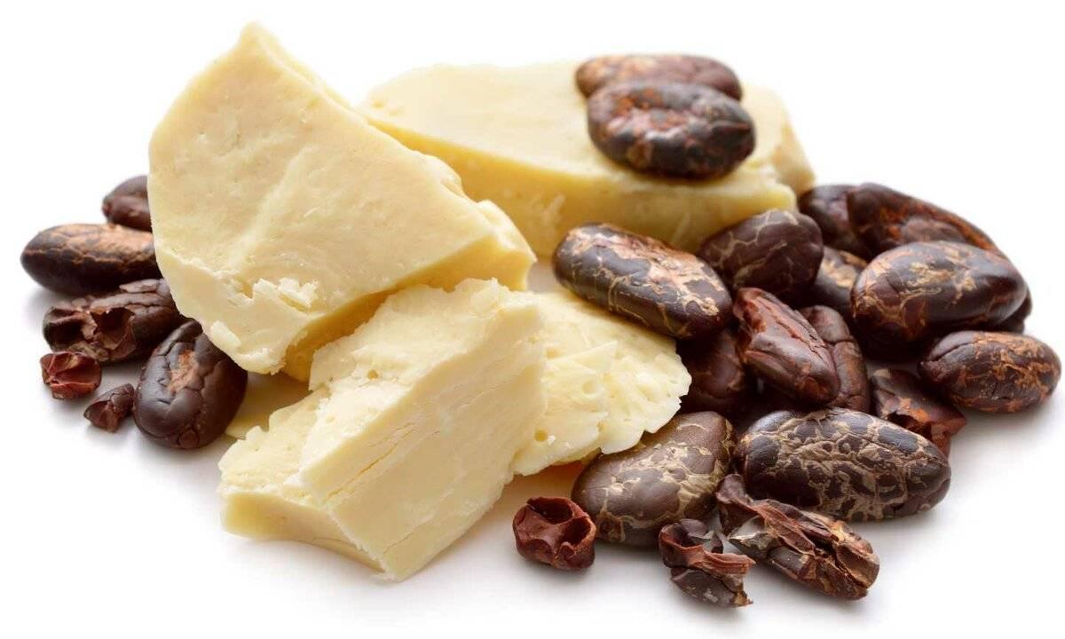 Масло какао — полезные свойства и применение