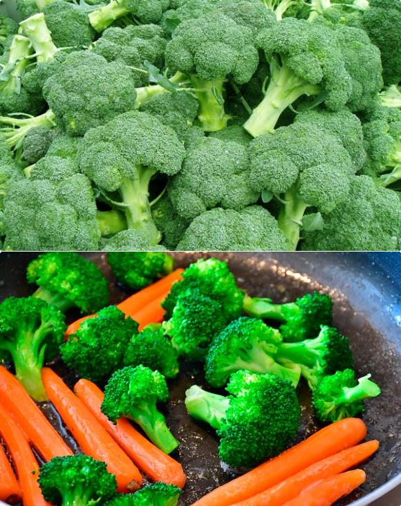 Польза и вред брокколи для здоровья человека