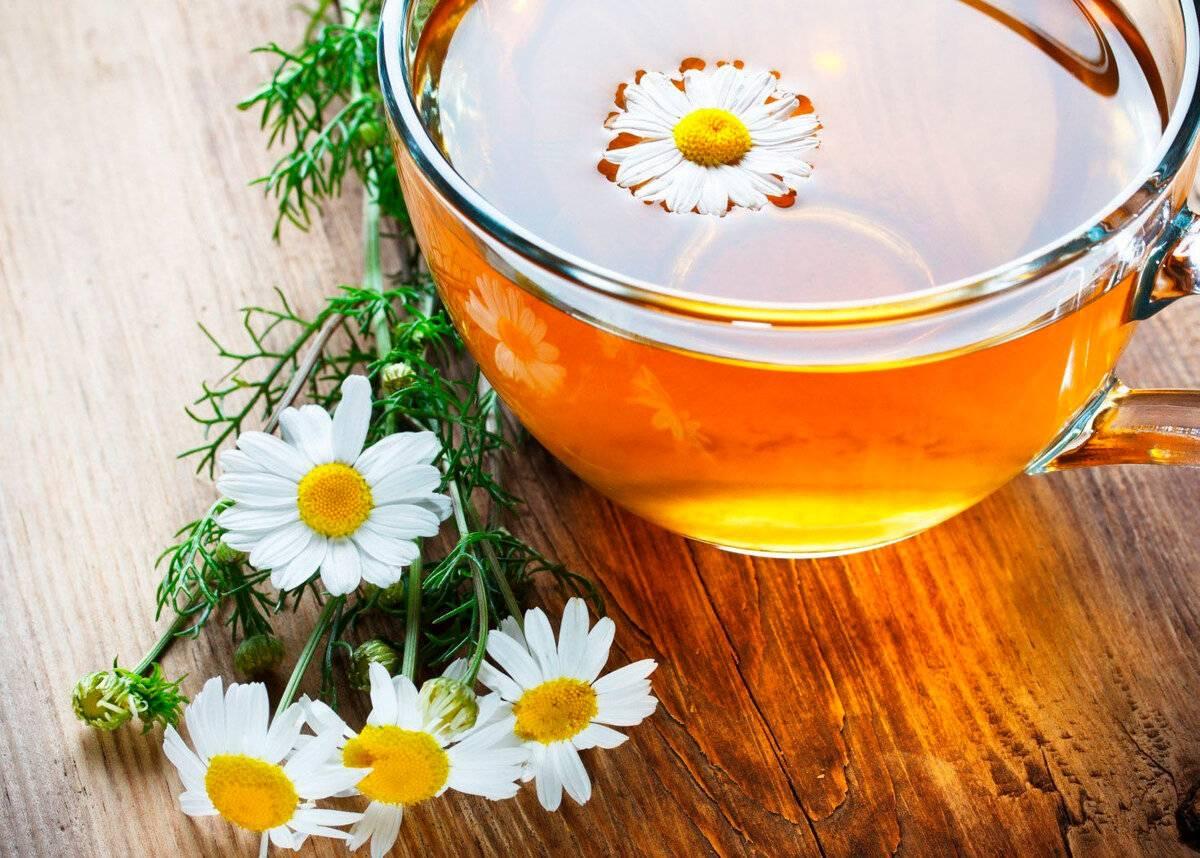 Чай из календулы: 8 рецептов и капля вреда