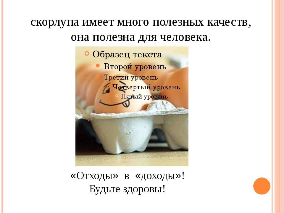 Как давать детям скорлупу яиц?