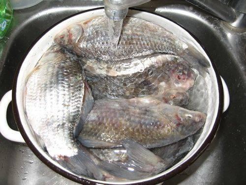 За сколько можно разморозить рыбу и как это правильно сделать?