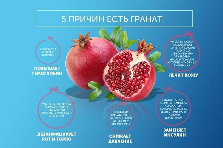 Гранат, польза и вред для здоровья человека