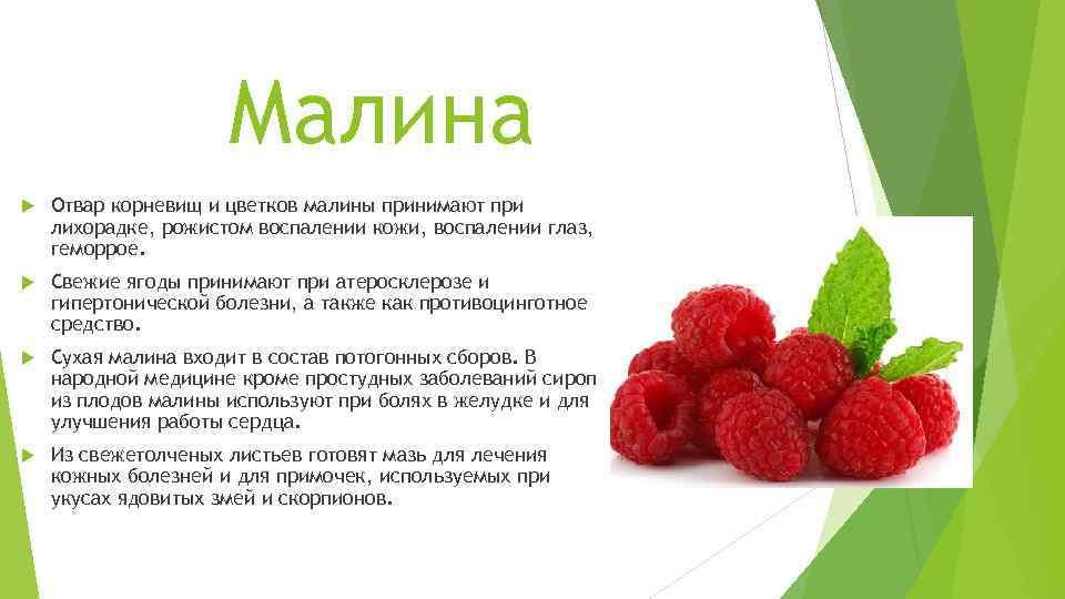 Польза и вред малинового варенья для здоровья