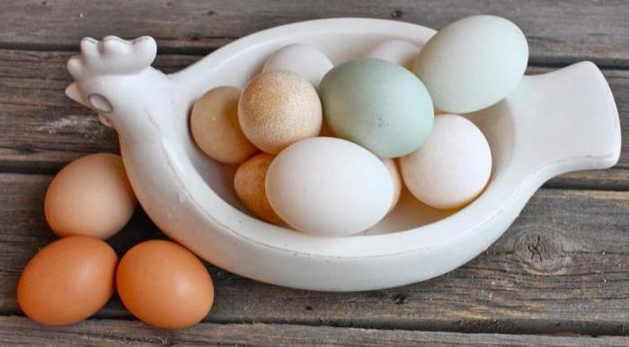 Утиные яйца польза и вред как готовить