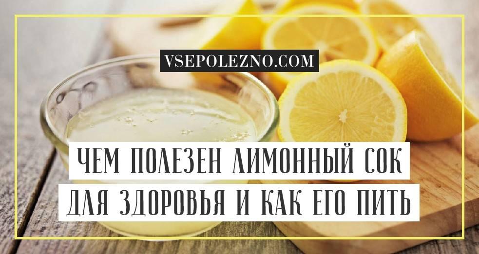 Что такое лимонник и чем он полезен?
