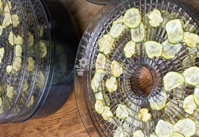 Как замачивать семена кабачков перед посадкой?