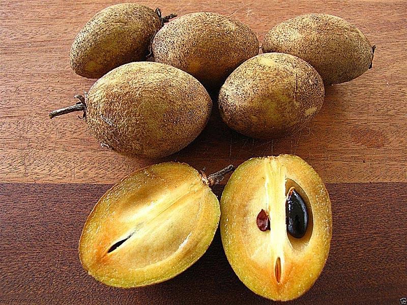 Айва или квитовое яблоко: что это за фрукт