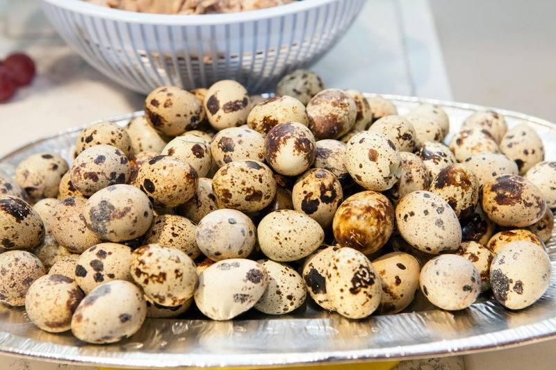 Как правильно варить перепелиные яйца после закипания воды: вкрутую и в смятку