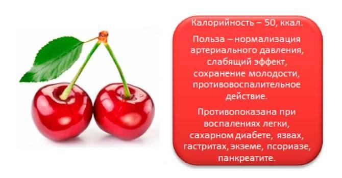 Ягоды вишни: польза и вред ❦