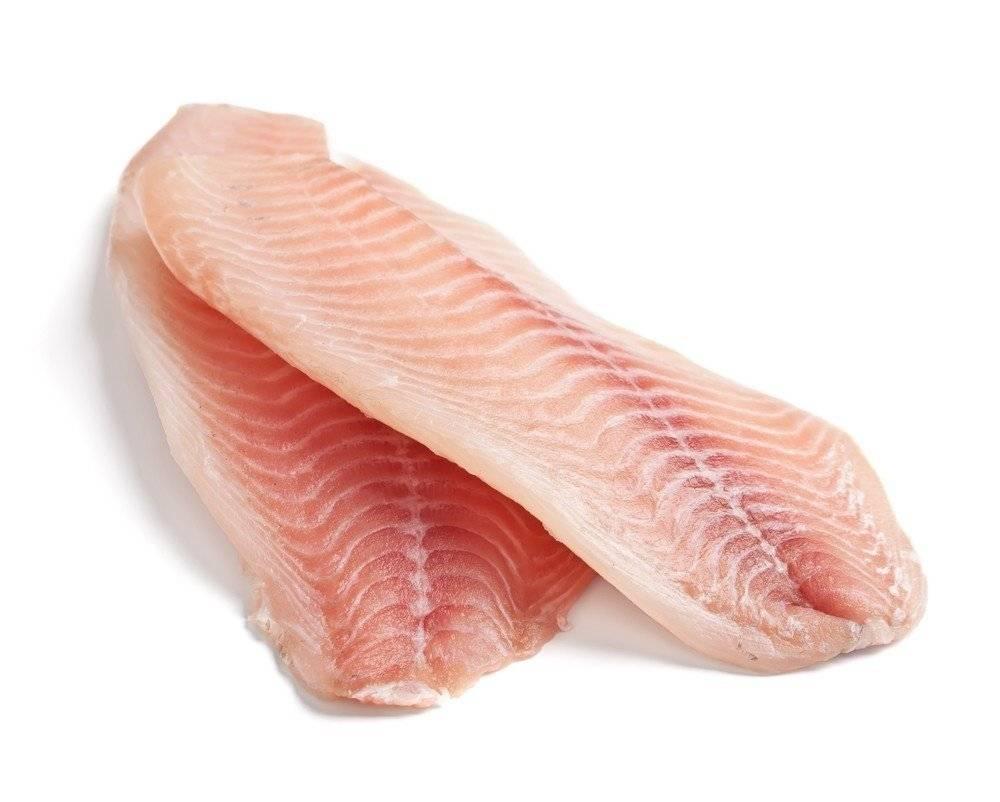 Рыба угорь: химический состав и польза. рецепты с угрем: суп из угря, запеченный угорь, салат с угрем