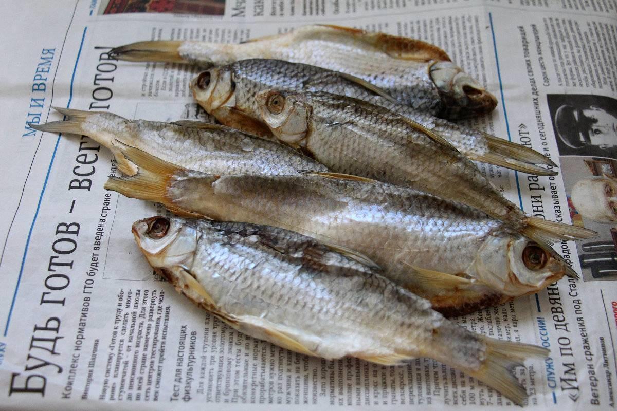 В чем разница между вяленой и сушеной рыбой?