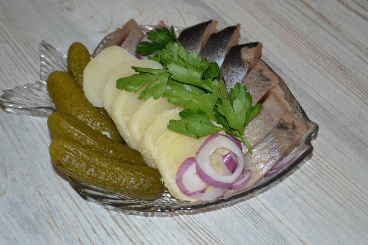 Солёная селедка: очень вкусные рецепты сельди в домашних условиях