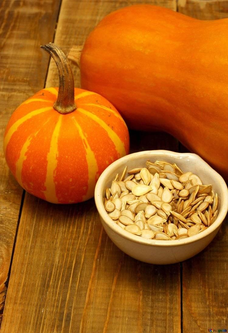 Польза и вред обычной тыквы: натуральный источник витаминов