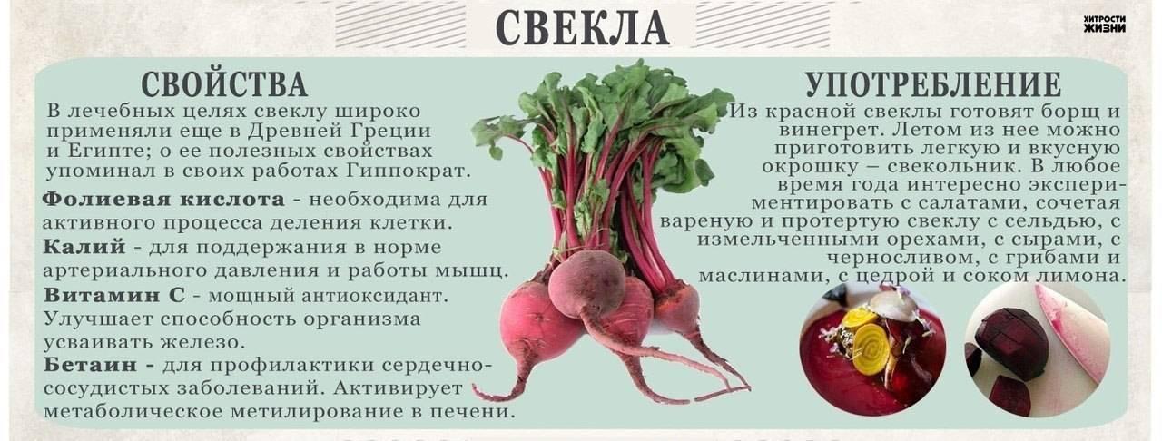 Можно ли есть свеклу на ранних и поздних сроках беременности при запорах и в других ситуациях, в каком виде кушать овощ?