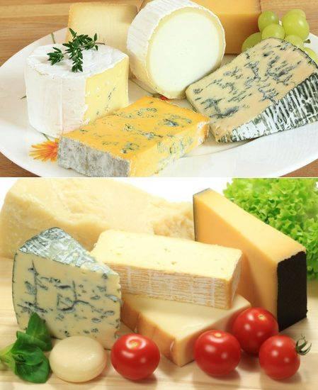 Польза и вред сыра с плесенью