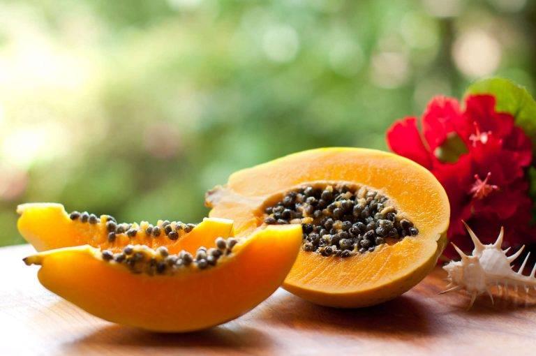 Польза и вред папайи для организма: поможет ли фрукт похудеть?