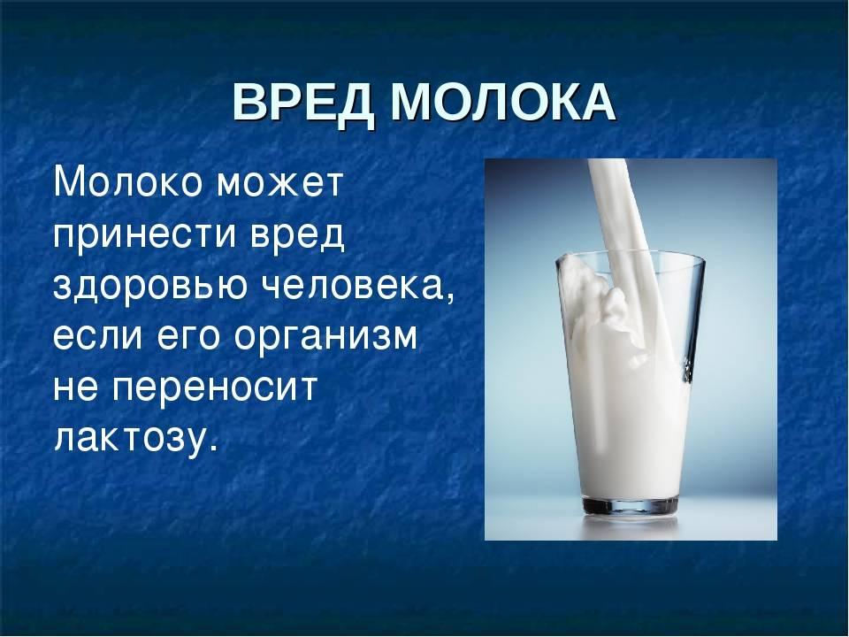 Молоко: полезные свойства и противопоказания