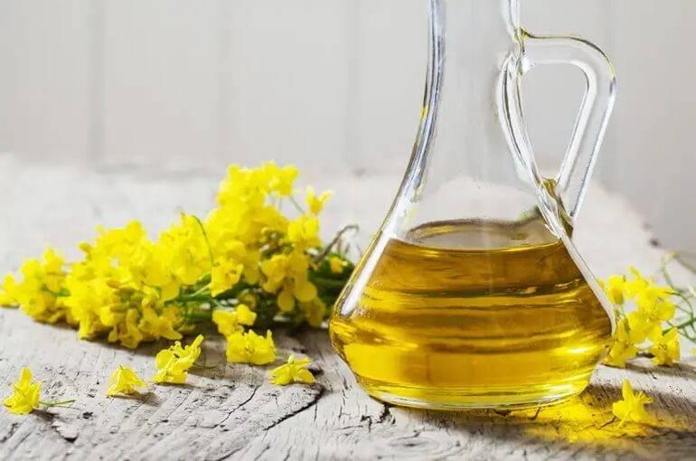 Рапсовое масло: полезные свойства, противопоказания, польза и вред