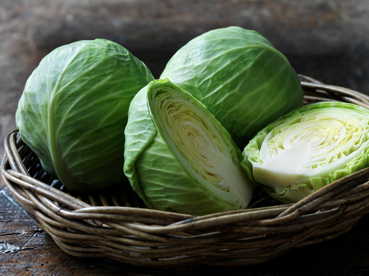 Белокочанная капуста, польза и вред для организма