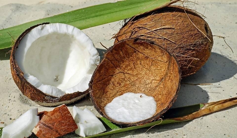 Польза и вред кокосового молока для организма женщины, мужчины, ребенка