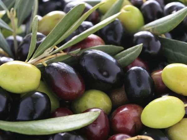 Чем полезны оливки для организма мужчин и женщин?